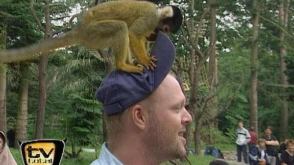 Raab In Gefahr Zoo